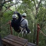 Canopy Tours, Tsitsikamma